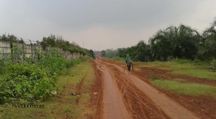 Jalan Tanah Berkelok