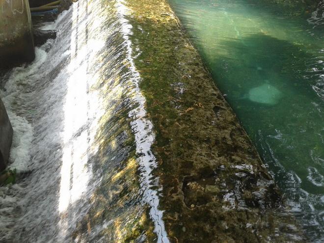 Tanggul air sebagai pintu keluar air menuju jalur irigasi.