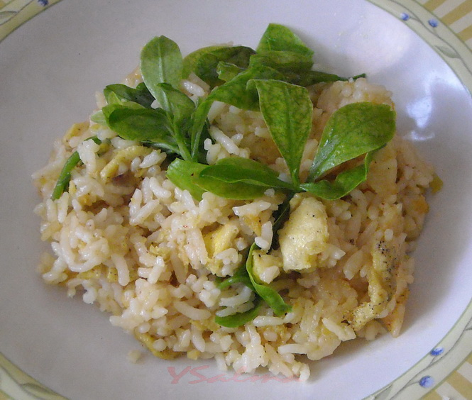 Nasi Goreng Rumahan sederhana, siap disantap :)