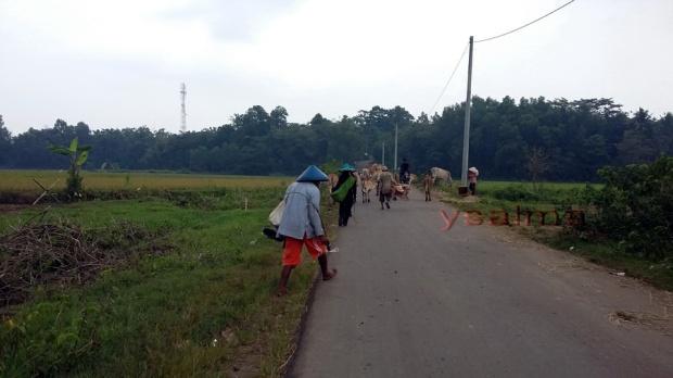 Wisata Desa Ligarmukti Berbagi Jalan