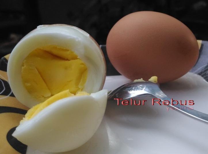 Sebutir Telur Rebus.jpg