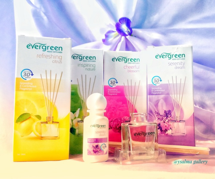 Kemasan Evergree Reed Diffuser