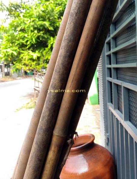 Bambu Irateun Tamiang Kering_YSalma