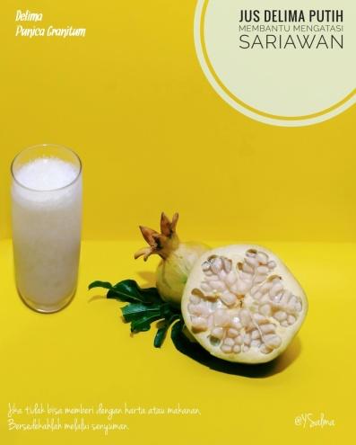 Jus Delima Putih Untuk Sariawan_YSalma