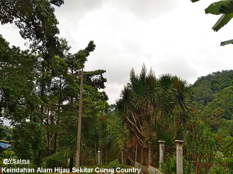 Hijaunya Keindahan Alam Sekitar Curug Country_YSalma