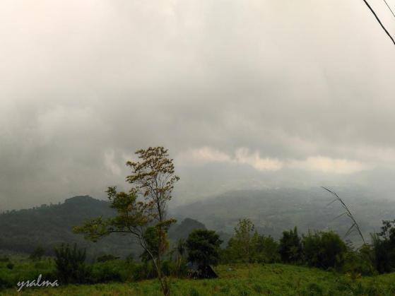 Pemandangan Hijau Kabupaten Bogor_YSalma