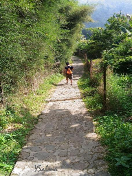 Jalan tangga turun menuju curug Cibulao