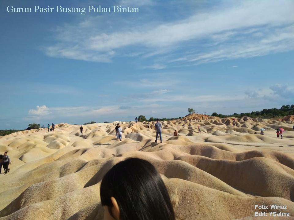 Gurun Pasir Bintan