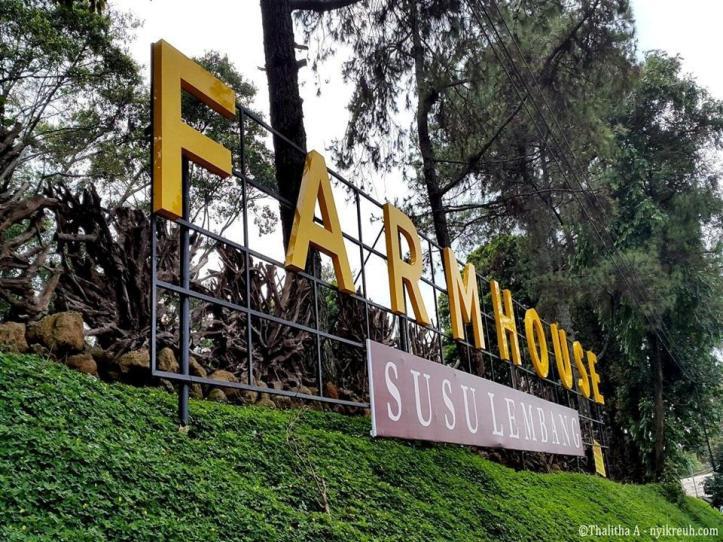 Farmhouse-Susu-Lembang