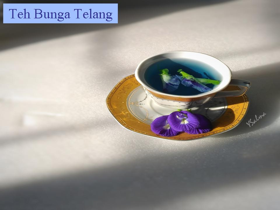 Teh Herbal Bunga Telang