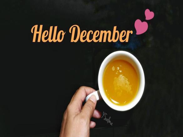 Kata Penyemangat Kehidupan Untuk Bulan Desember Ysalma