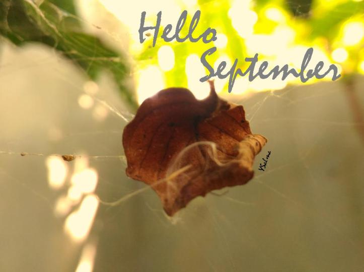 Hello September Ceria